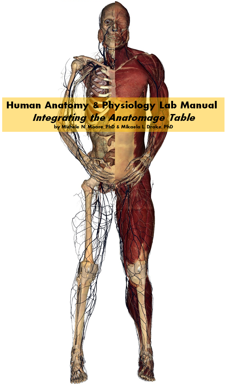 Human Anatomy and Physiology Lab Manual Integrating the Anatomage Table