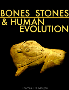 Bones, Stones and Human Evolution