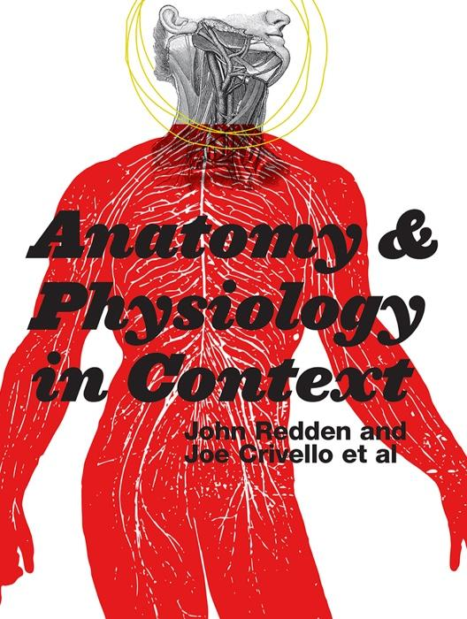 Anatomy And Physiology In Context Chapter 1 End Of Chapter