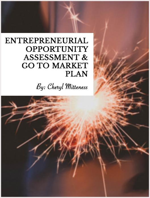 Entrepreneurial Opportunity Assessment & Go to Market Plan