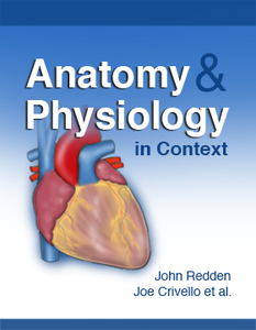 Anatomy and Physiology in Context | Top Hat