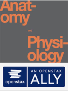 OpenStax: Anatomy and Physiology