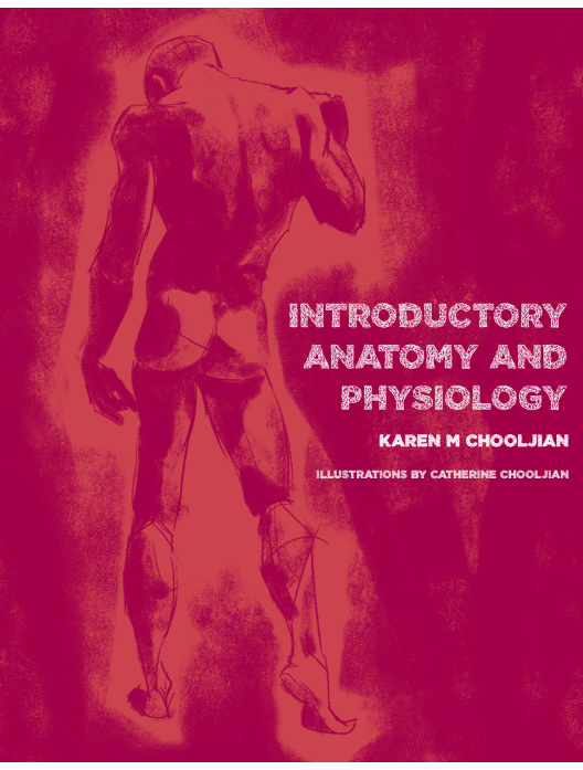 Introductory Anatomy and Physiology: Text & Lab Manual